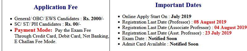 Delhi University DU Professor Online Form 2019