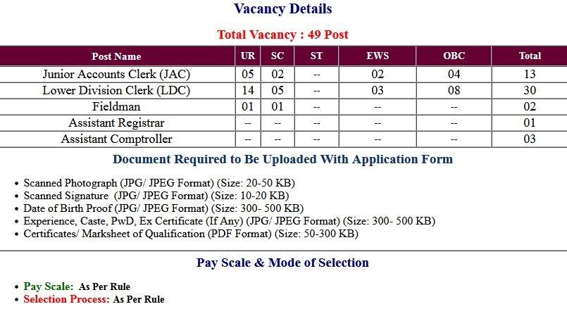 RPCAU- LDC Jr. Account Clerk Fieldman And Other Post Application Form 2021